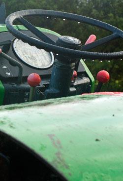 Olive-Pressing-NZ-Maintenance